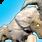 Unlock Battering Ram