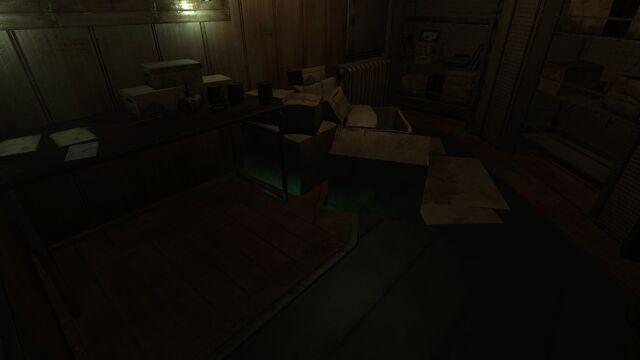 File:Light Through Floors Bug.jpg