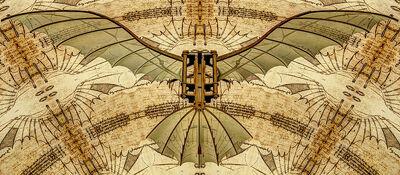 Moth315