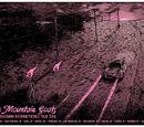 Twin Inhuman Highway Fiends Tour 2014
