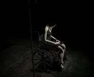 Emily Wheelchair-Nh2