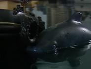 WhaleOfATug56