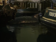 WhaleOfATug126
