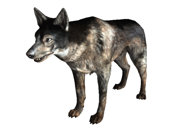 File:619px-Dog FO3.png