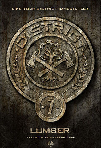 File:The-Hunger-Games-2012-Movie-District-Posters-7.jpg
