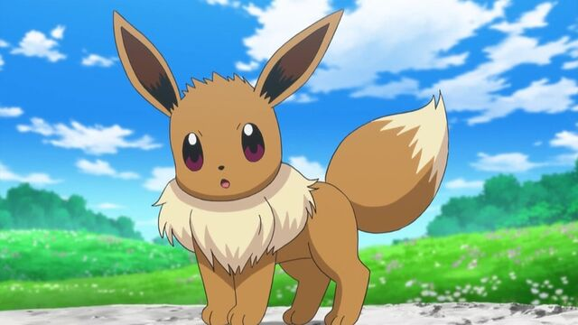 File:Eevee anime.jpg