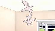 S8E23.167 Two Turtle Doves