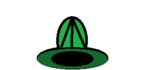 Green Lined Hat
