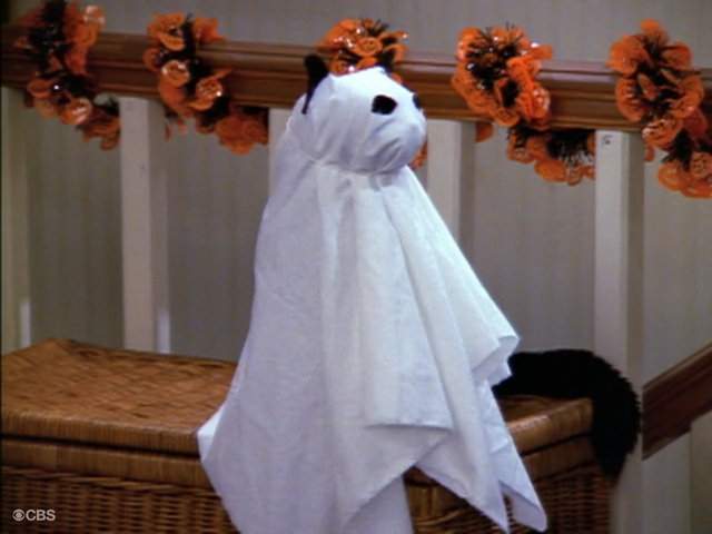 File:Salem as a Ghost.png
