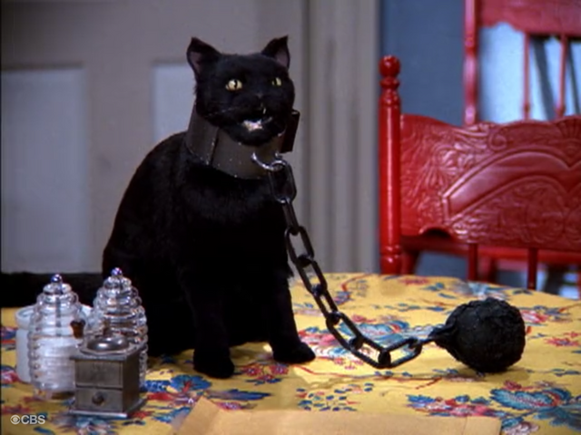 File:Salem in Ball and Chain.png