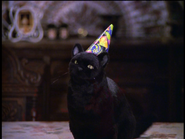 Salem Welcomes Sabrina Back