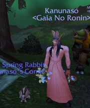 Rabbit Kan