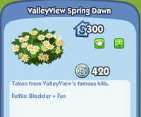 ValleyView Spring Dawn