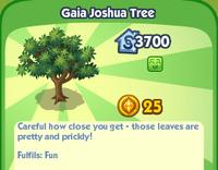Gaia Joshua Tree