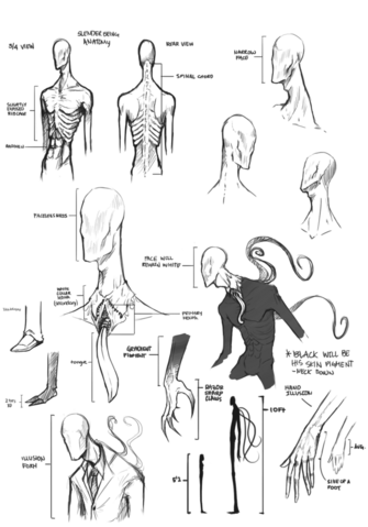 File:Slender being anatomy by suchanartist13-d6fs8oo.png