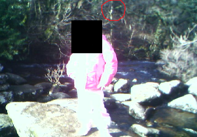 File:Slender man in my photo?.png
