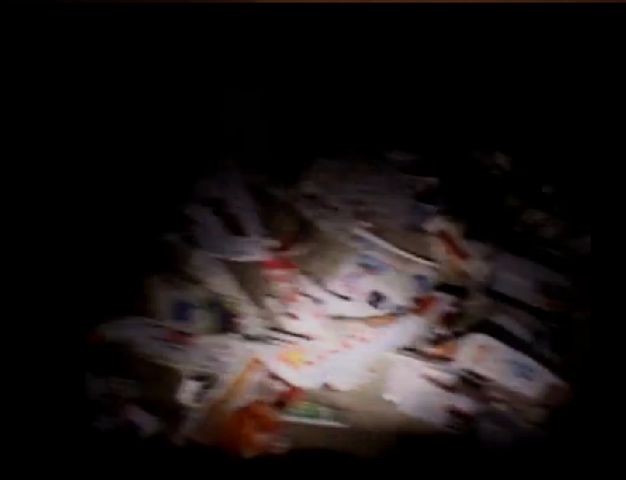 File:Brians garbage.png