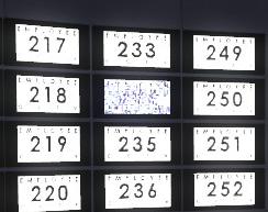Employee 234 monitor