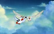 Swan- -Puffin 1024x1024
