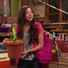 Phoebe with Venus Fly Trap