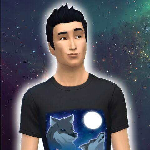 File:Sims 4 Avatar.jpg