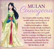 Mulan Couragous