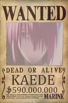 KAEDE Wanted