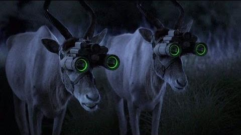 GEICO Night Vision Commercial - Happier than an Antelope with Night Vision Goggles