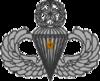 Master Parachutist Badge (1 Jump)