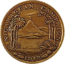 First Nicaraguan Campaign Medal (medal only)