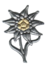 Mountain Troops Hat Badge