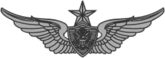 Army Aviation Badge (Expert)