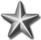 File:Silver Service Star.png