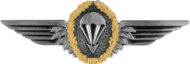 Parachutist Badge, Silver (Germany)