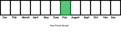New Forest Burnet TL