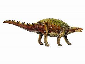 Priodontognathus-unknown
