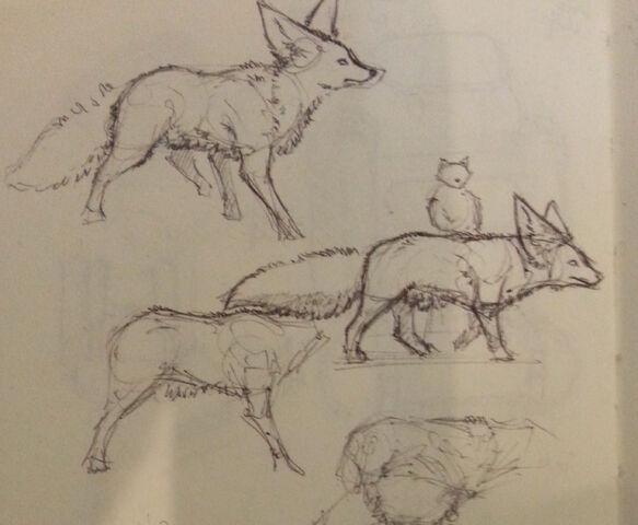 File:Fennec wolf sketches ipoke.jpg