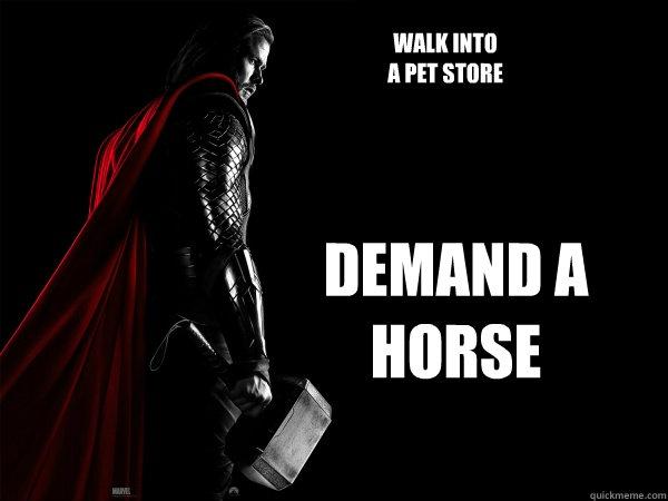 File:I DEMAND A HORSE!.jpg