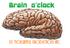 Brain o'clock