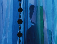 Langley-cameo-curtain