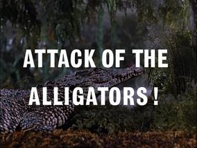 Image Attack of the Aligators