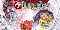 He-Man/ThunderCats 2