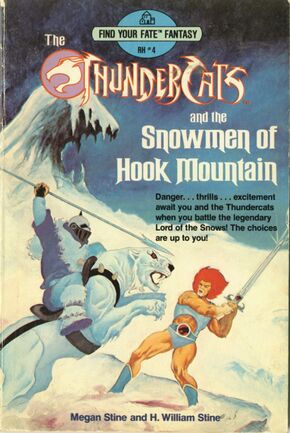 Snowman of Hook Mountain Book