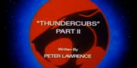 ThunderCubs - Part II