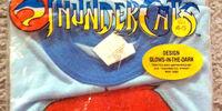 ThunderCats Kids Pajamas