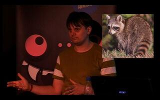 Eskil raccoon2