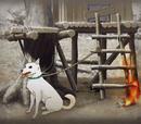 Arson at the secret hideout