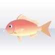 Fish 43004904 shop