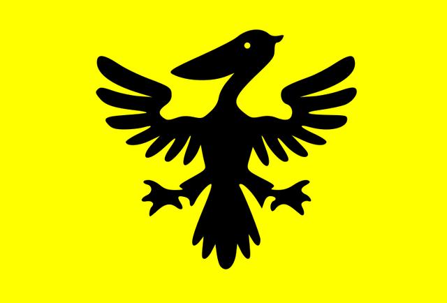 File:Flag of Syldavia.png