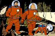 Tintin in the cave